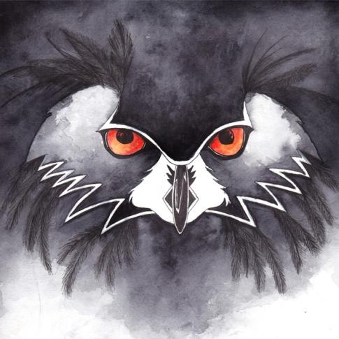 owlinsta